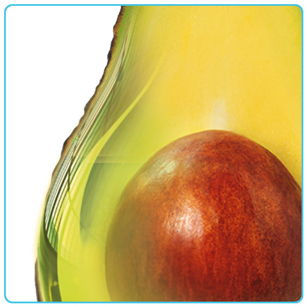 Avocado, Vegetable OIls - Materia Aromatica