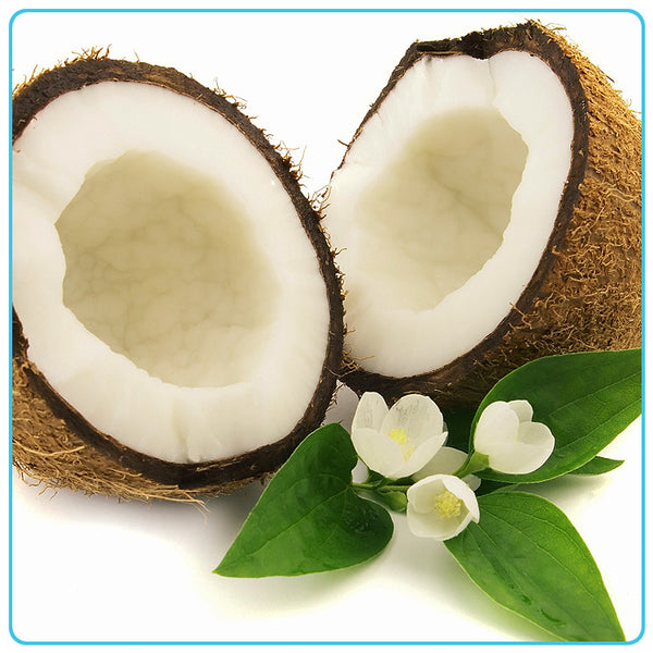 Coconut (natural fragrance), Vegetable OIls - Materia Aromatica