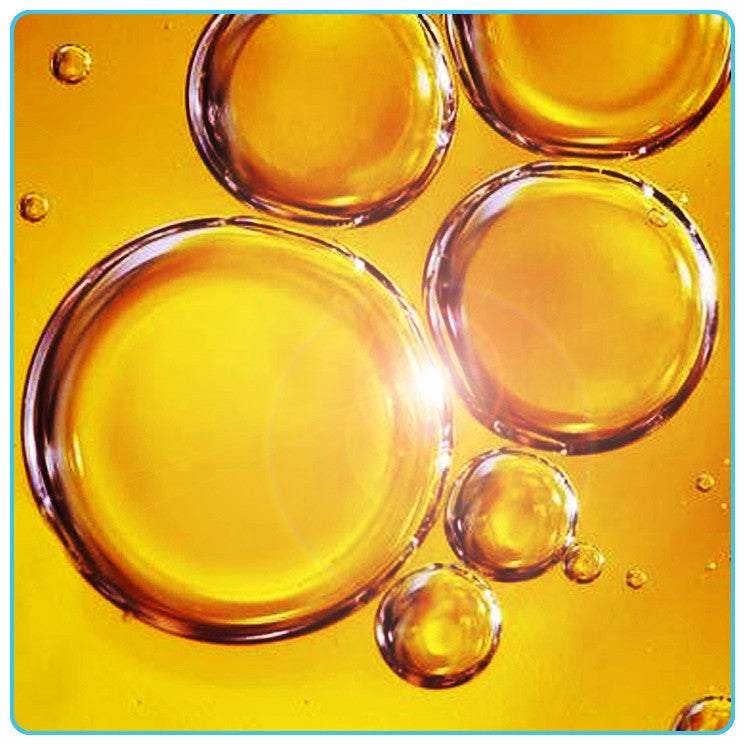 Sunflower, Vegetable OIls - Materia Aromatica
