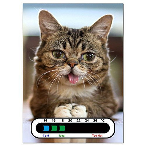 Baby Safe Ideas Meow Cat Nursery Room Thermometer - Using Latest Easy Read Colour Changing Technology - Also Great for Adults!