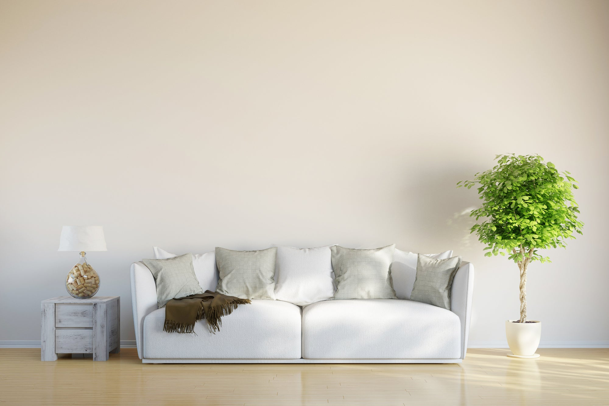 The Right Way to Clean Sofas