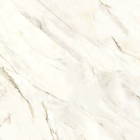 "Calacatta 17""X17"" Bright Blanco Floor Tile"