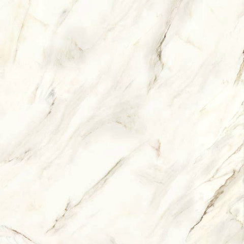 "Calacatta 24""X24"" Rectified Matte Blanco Floor Tile - American Fast Floors"