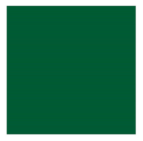 "Color Collection Bright 4-1/4""X4-1/4"" Kelly Green Surface Bullnose Angle - American Fast Floors"