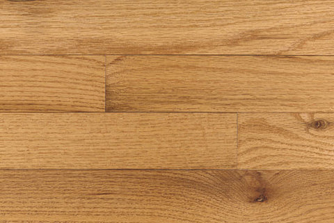 "Congress Oak White Natural Oak 2.25"" Solid Hardwood - American Fast Floors"