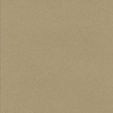 American Olean Decorum 12 x 12 Proper Taupe Polished Floor Tile