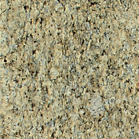 "Daltile Granite Collection 12"" x 12"" Giallo Ornamental Large Field Tile"