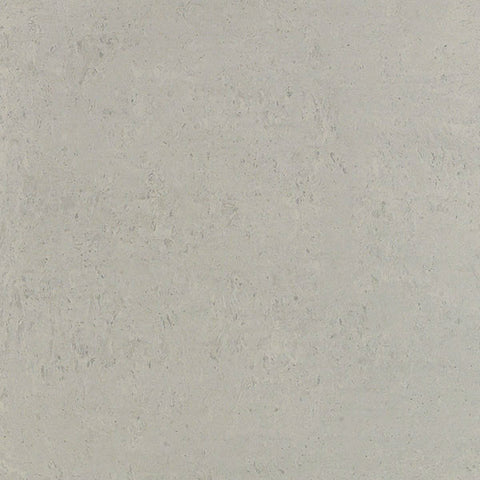 "Orion 24""X24"" Rectified Gris Polished Floor Tile"