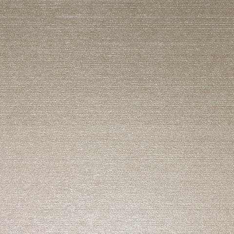 Daltile P'Zazz 2 x 24 Tan Dazzle Linear Option