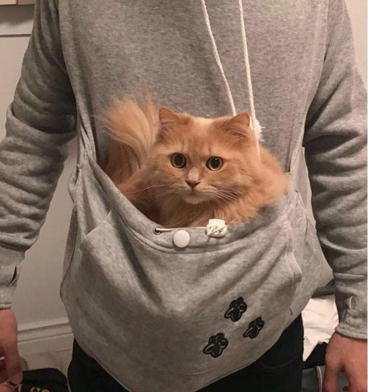 Cat Hoodie With Pouch-Pawsome Couture