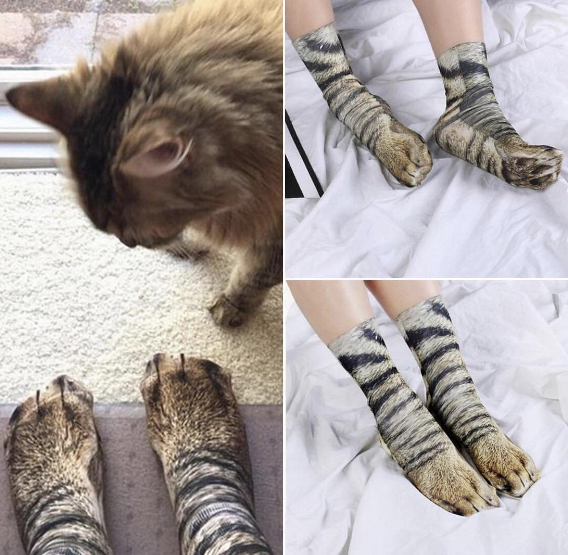 Hilarious Cat Paw Socks Set - Pawsome Couture