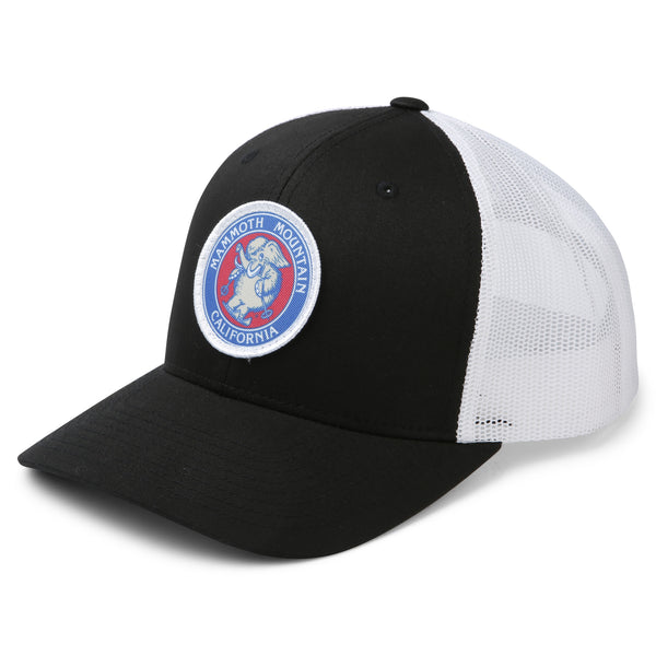 Skiing Woolly Youth Snapback