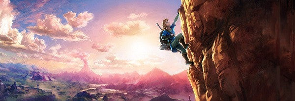 Amazon Leaks The Legend Of Zelda Wii U Promotional Artwork Before E3 2016