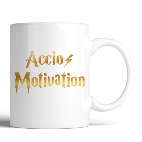 Harry Potter Accio Motivation 11oz Mug