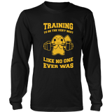 Pokemon Training To Be The Very Best Like No One Ever Was Shirt - NerdKudo - 9
