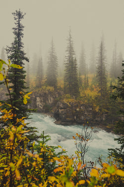Autumn Mist, Mt. Robson