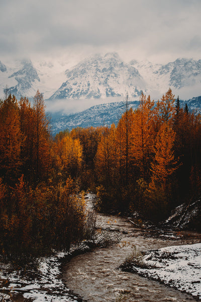 Autumn Northern British Columbia I
