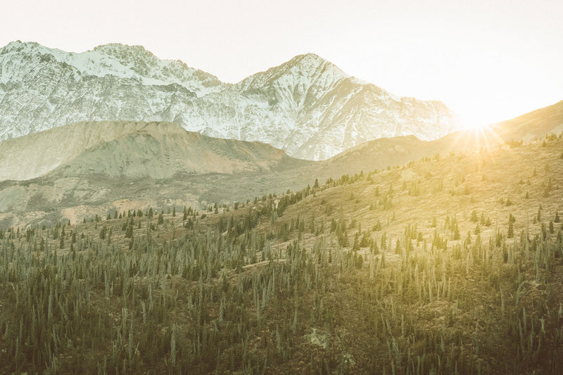 Golden Hour, Kluane National Park, Yukon