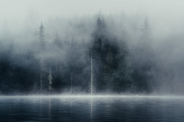 Misty Autumn Morning, Lost Lake, Whistler