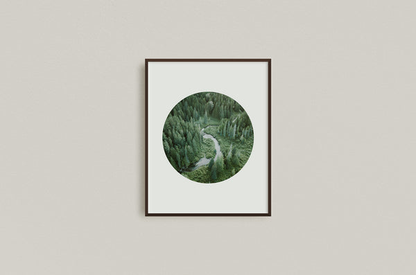 Old Growth Stream, E.C. Manning Park, Circular Print