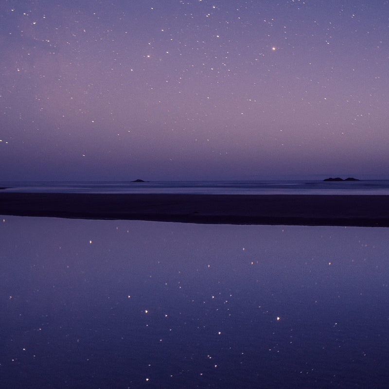 Stars in the Tide Pool, Pacific Rim National Park