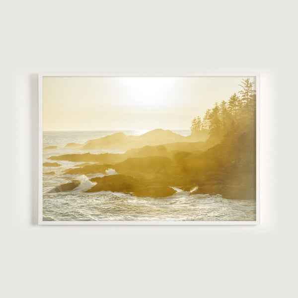 Wild Pacific Light