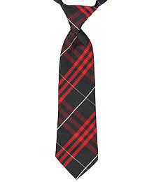 Plaid #37 Necktie