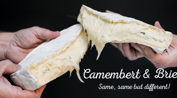 The difference between Brie and Camembert