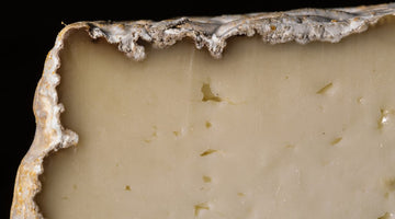 Mind the Rind -  A Cheese Photo Journal