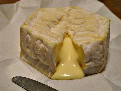 Gooey Cheese