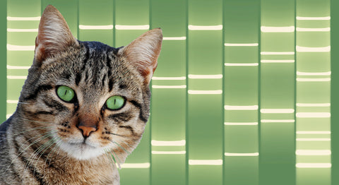 Pet Portrait DNA Art on Canvas - Green