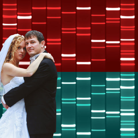 Combined Couples DNA Art Crimson Green