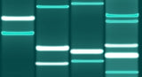 Teal DNA Art (Downloadable)