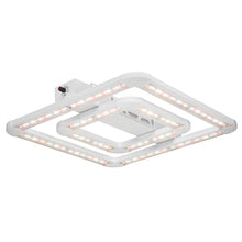 Introducing the FGI Square LED Grow Light, Designed by Master Growers, Approved by Mother Nature