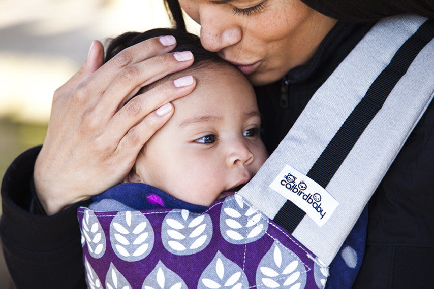 CATBIRD BABY ANNOUNCES INNOVATIVE NEW CARRIER!