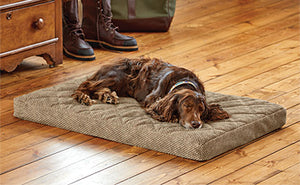 Orvis Memory Foam Platform Dog Bed