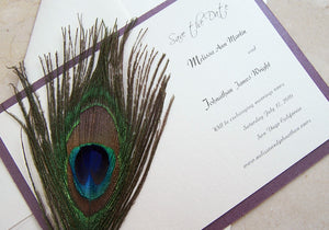 Spectacular Peacock Save the Date