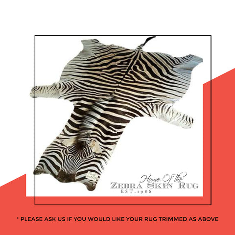 Authentic Zebra Skin Rug