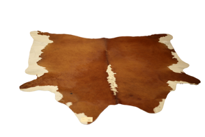 COWHIDE : C18-12 - Trophy Room Collection