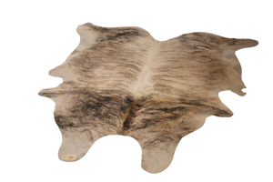 COWHIDE : C18-05 - Trophy Room Collection