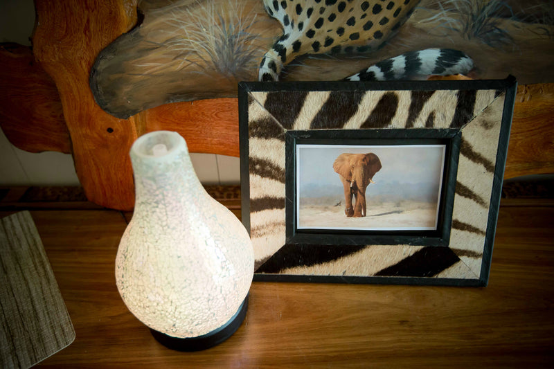 Zebra Picture Frame - Trophy Room Collection