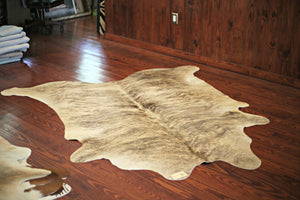 COWHIDE : C18-06 - Trophy Room Collection