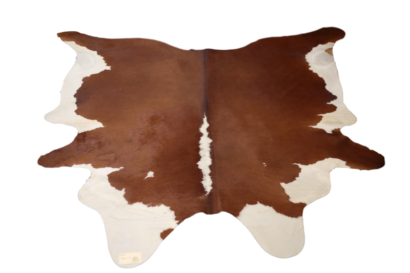 COWHIDE : C18-10 - Trophy Room Collection