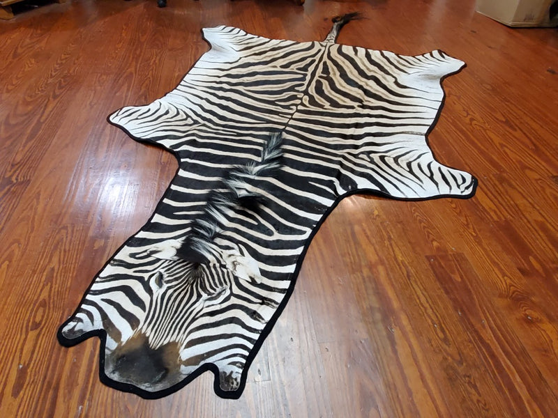 B Grade Zebra Rug: B1 With Felt Backing