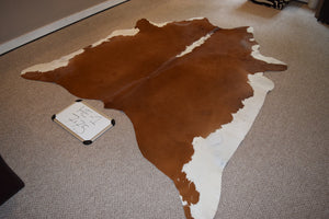 Hereford cowhide