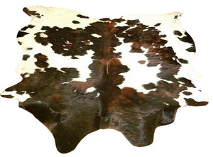 Cowhide # TRI 11 - Trophy Room Collection