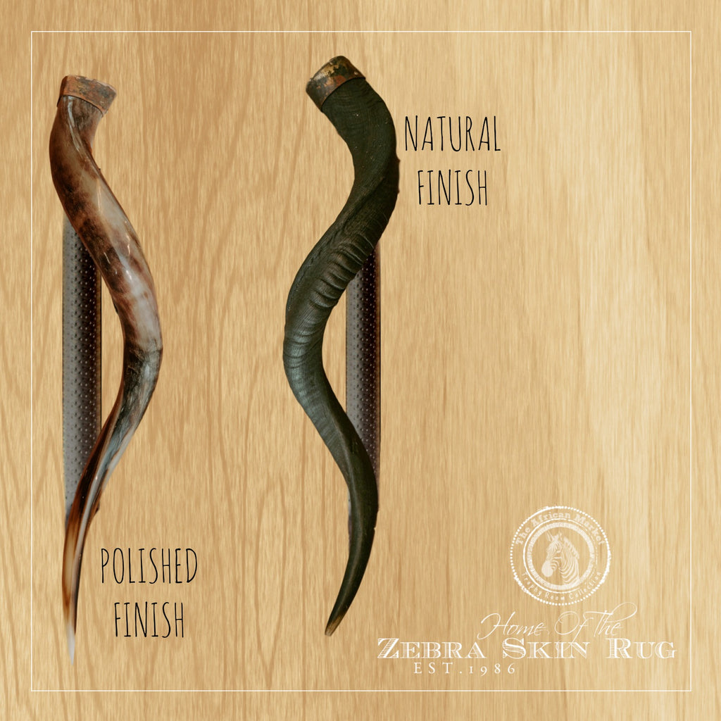 "KUDU HORN Door Handle - 24"" or 32"" - Trophy Room Collection"