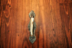 "WARTHOG TUSK Door Handles (11.5"" long) - Trophy Room Collection"