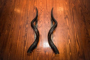 "KUDU HORN Door Handle - 24"" or 30"" - Trophy Room Collection"