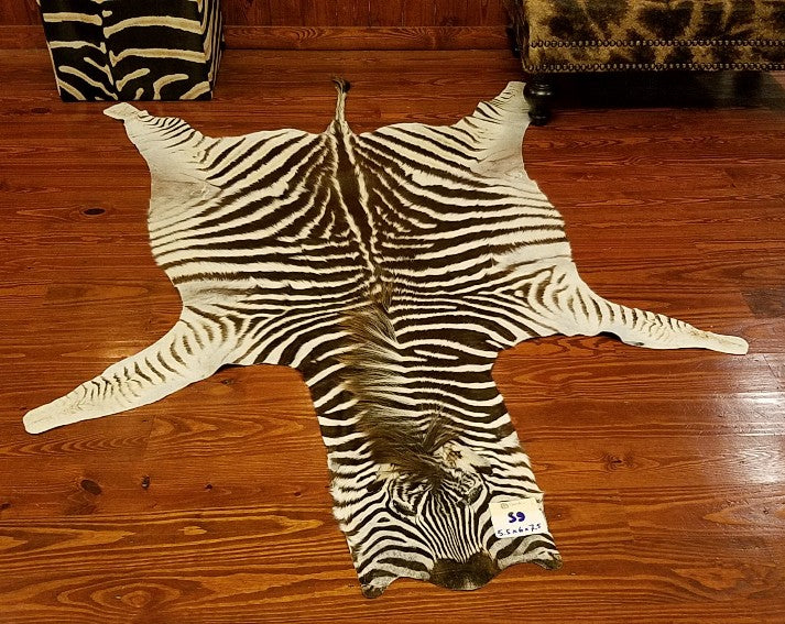 S-Grade ZEBRA SKIN RUG - S9 - Trophy Room Collection